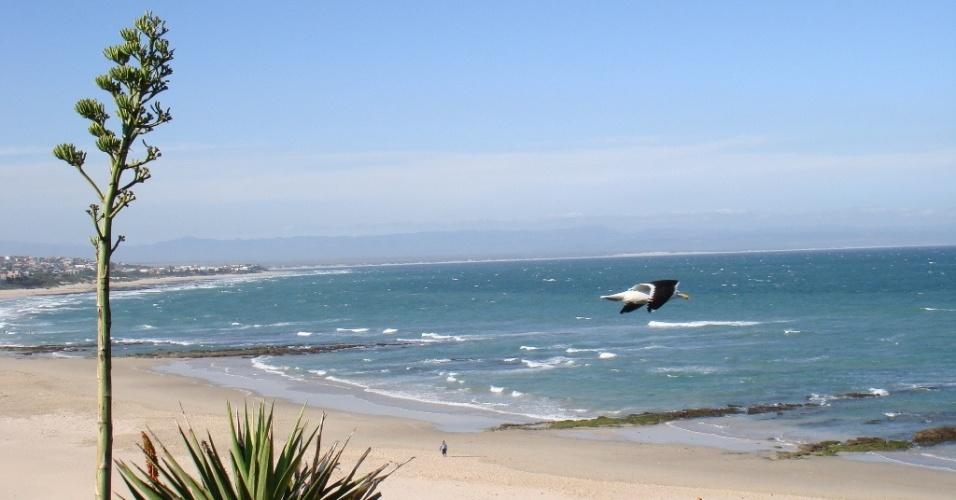 Praia na baía de Jeffrey (Jeffrey's bay), uma das praias mais citadas pelos intercambistas entrevistados
