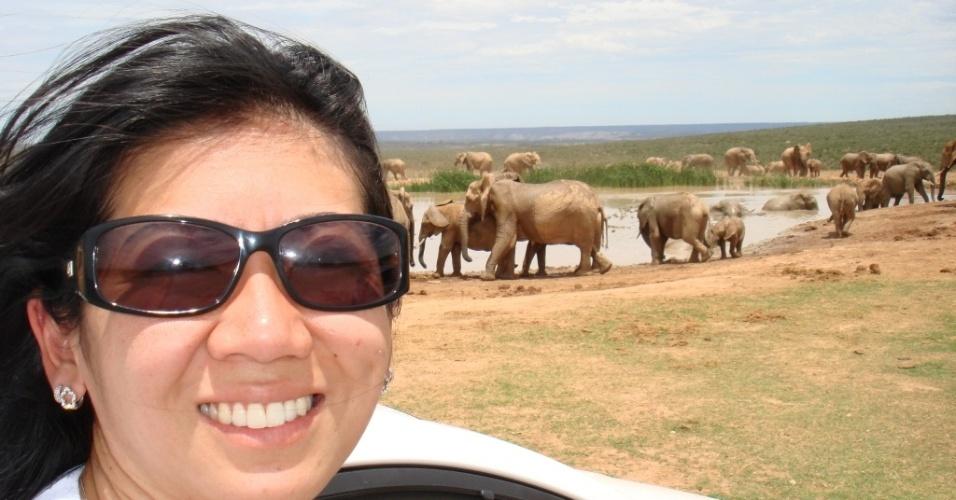 Regina Junko com elefantes em Addo Elephant Park, um safári próximo à cidade de Porto Elisabeth