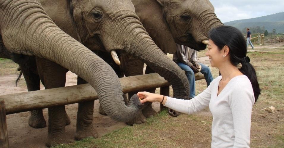 Regina Junko com elefantes em um dos três Santuários de Elefantes espalhados pela África do Sul